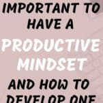 Why it's Important to Have a Productive Mindset and How to Develop One | thelifehunt.com